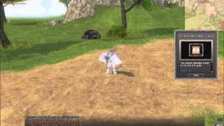 Mabinogi - Wings of Rage and Shadow Spirit Example