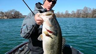 Big Bass on Red Crankbaits ft. (Walker Wilson, Jon B., Flair, Tyler, and Mike)