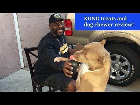 KONG Extreme Chewer Toy and Kong Dog Treats - Pitbull Dog Nalah Loves These Treats!!
