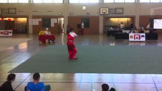 Wushu DM-Manuel Bickel-GS