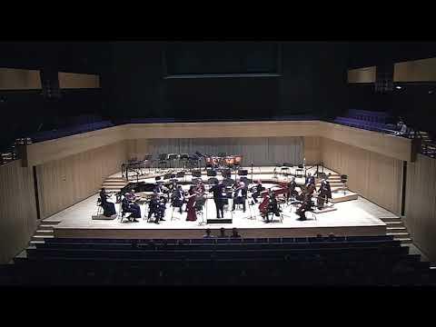 G. Pergolesi Violin Concerto