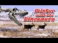 watch he video of Winter with the Dinosaurs - Camping Dinosaur Park