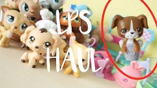 〚LPS Haul〛 30+ LPS and Fake LPS??