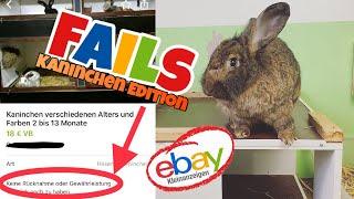 ebay Kleinanzeigen Fails | Kaninchen Edition