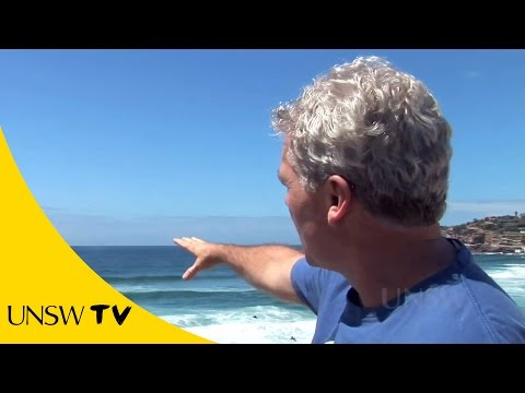 How to survive beach rip currents?