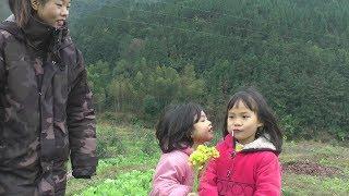 两姐妹跟燕子去菜园摘菜,姐姐很能干妹妹也懂事,看到最后好暖心