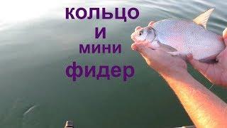 Рыбалка на реке Дон. Кольцо и мини фидер 2018 HD