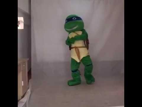 TMNT Teenage Mutant Ninja Turtle Mascot Adult Character