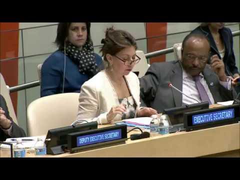 UNDP Executive Board —Annual Session 2016