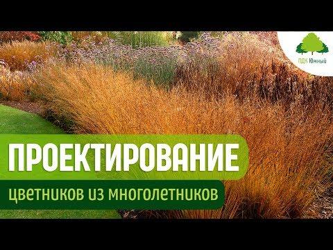 Дизайн цветников. Злаки и многолетние растения в саду | Борисова Наталья