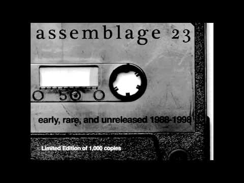 Assemblage 23 Sometimes I Wish I Was Dead