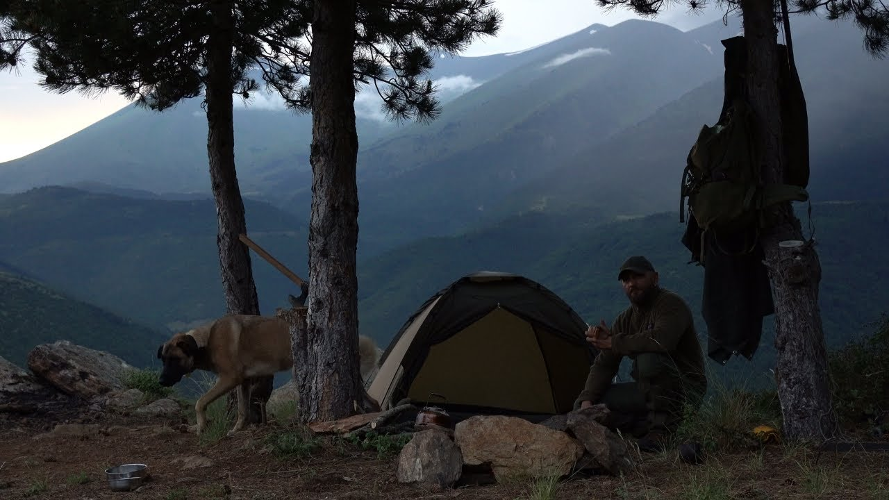 Wild camp on the mountain with tarptent. Heavy rain, Beef steak on fire. Made fire protection ASMR