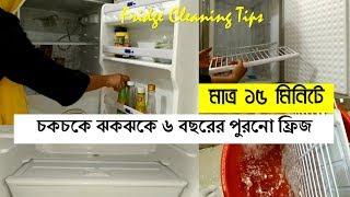 ঝটপট ফ্রিজ পরিষ্কার করার টিপস Fridge Cleaning Tips | Fridge Cleaning Ideas | How I Clean My Fridge