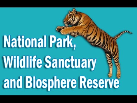 National Park, Wildlife Sanctuary and Biosphere Reserve of India  in Hindi | Static GK