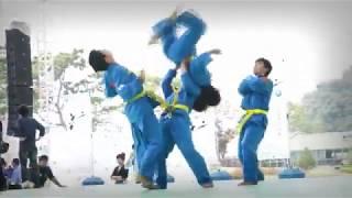 충주세계무술축제 베트남비에트보다오공연2013