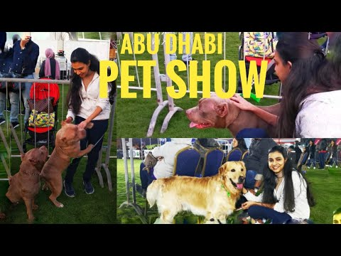 Pet Show 2020 | Abu Dhabi pet show | Dog Show @ Yas Island | UAE-Pet Show | EKC | English Subtitles