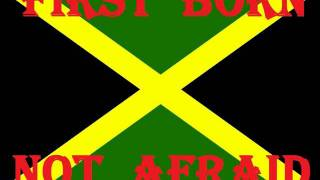 Download FIRST BORN - NOT AFRAID - (JAH LIVE RIDDIM).wmv MP3 song and Music Video