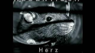 Rebentisch - Herz Zerrissen - Angst (2009) - Track 1