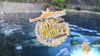 Kantai Collection [OP Parody] - GMF Anime