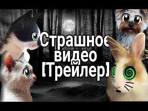 Страшное Видео [А ну-ка Давай-ка] (Трейлер)