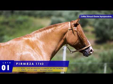 LOTE 01 -  Firmeza 1742