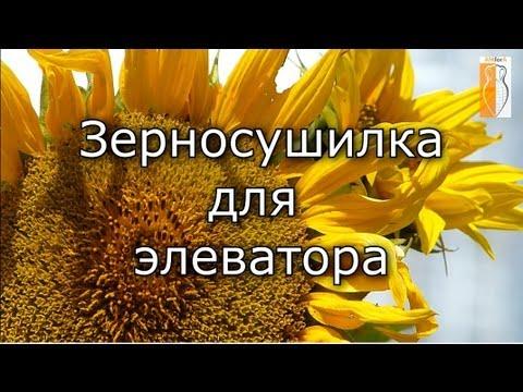 Зерносушилка для элеватора - зерносушилка Kepler Weber в Украине