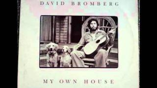 David Bromberg - Chump Man Blues