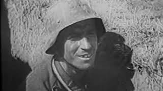 Немецкая военная кинохроника.Солдаты против танков.Ближний бой с танками