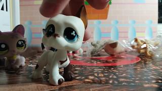 Распаковка LPS Littlest Pet Shop новых Пэтов: Кошки-стоячки ...
