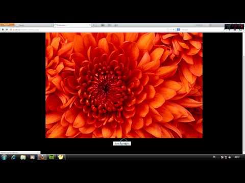 HTML/PHP: WebEditor Einbaun Bugfix Bild Speichern - DarkDino2010