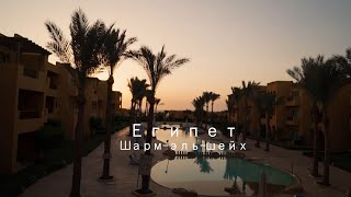 Египет 2021 Шарм эль шейх Путешествие с семьей