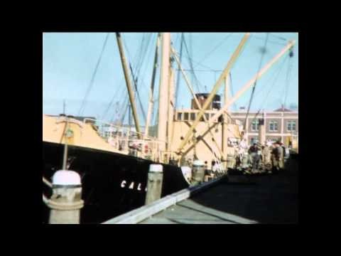 Otago Harbour in the 1950s