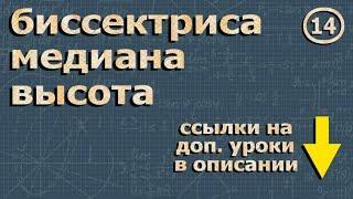 геометрия ВЫСОТА МЕДИАНА БИССЕКТРИСА треугольника 7 класс