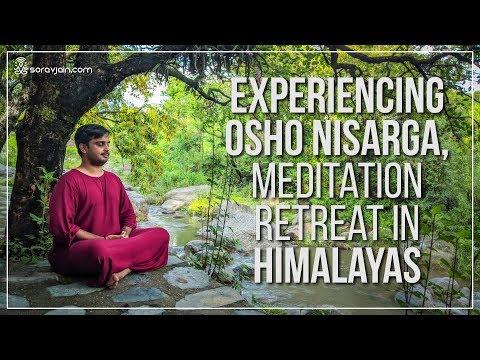 My Experience At Osho Nisarga, Meditation Retreat Centre In Himalayas, Dharamshala