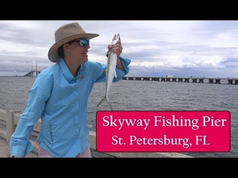 Skyway Bridge Pier Fishing, St. Petersburg FL - Gag Grouper, Mackerel, Lizard Fish