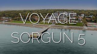 Любимое место в Турции обзор Voyage Sorgun 5 после карантина 2020 самый зеленый отель в лесу