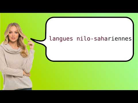 How to say 'Nilo-Saharan' in French?