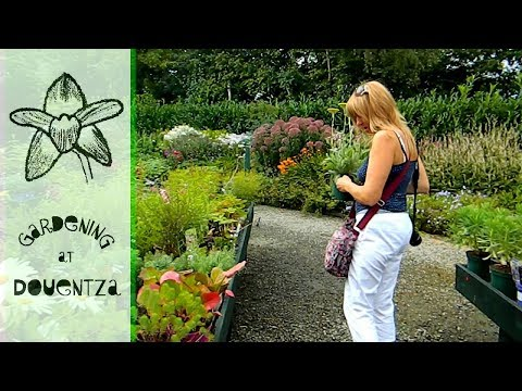 Garden Centre Meeting & Purchases - Ratoath, Co Meath