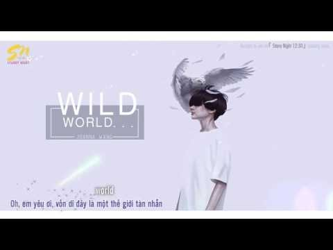 [Vietsub/Lyrics] Wild World - Joanna Wang (Acoustic Version)
