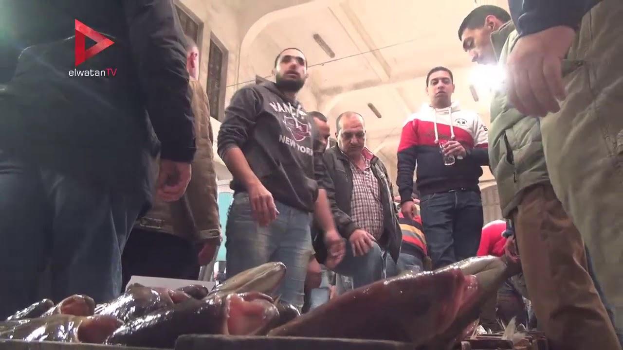 الوطن المصرية:حلقة السمك بـ