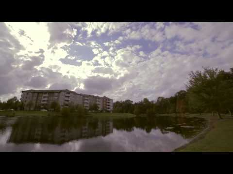 The Bubble - A Documentary Film About Celebration, Florida TRAILER