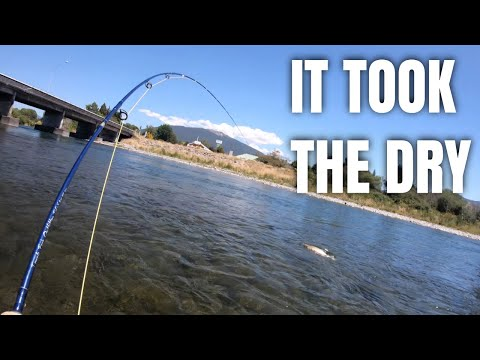Fly Fishing For TROUT In The Famous TONGARIRO River Bridge Pool