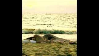 şarkılar syle o sahillerde