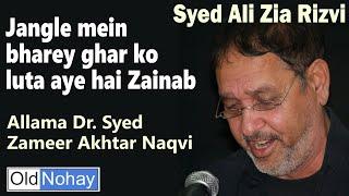 Old Nauha - Jangle main bharey ghar ko luta aye hai Zainab