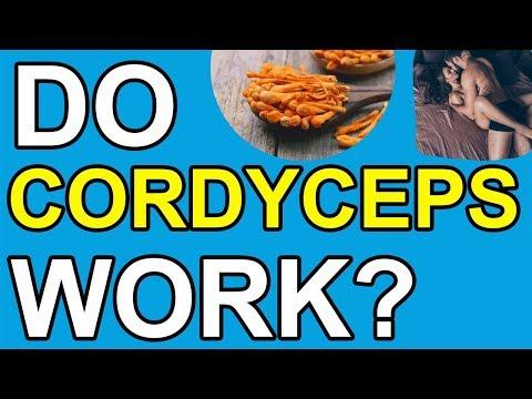 cordyceps-mushroom-health-benefits:-5-proven-scientific-benefits-for-superior-health-&-longevity