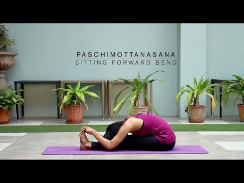 how to do paschimottanasana  sitting forward bend  youtube