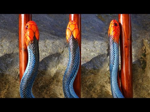 Carving A Malaysian Blue Coral Snake Walking Stick #73