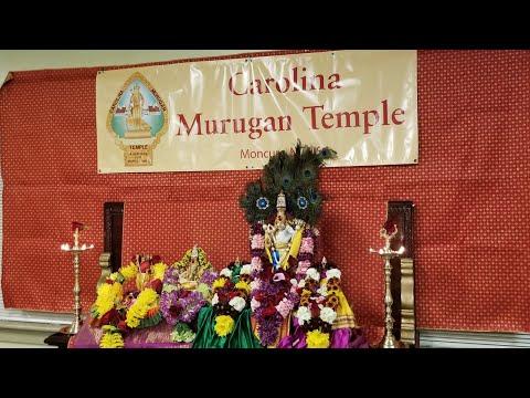 தைப்பூச திருவிழா - நேரடி ஒளிபரப்பு