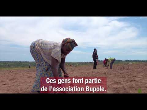 Kasaï : se nourrir et survivre
