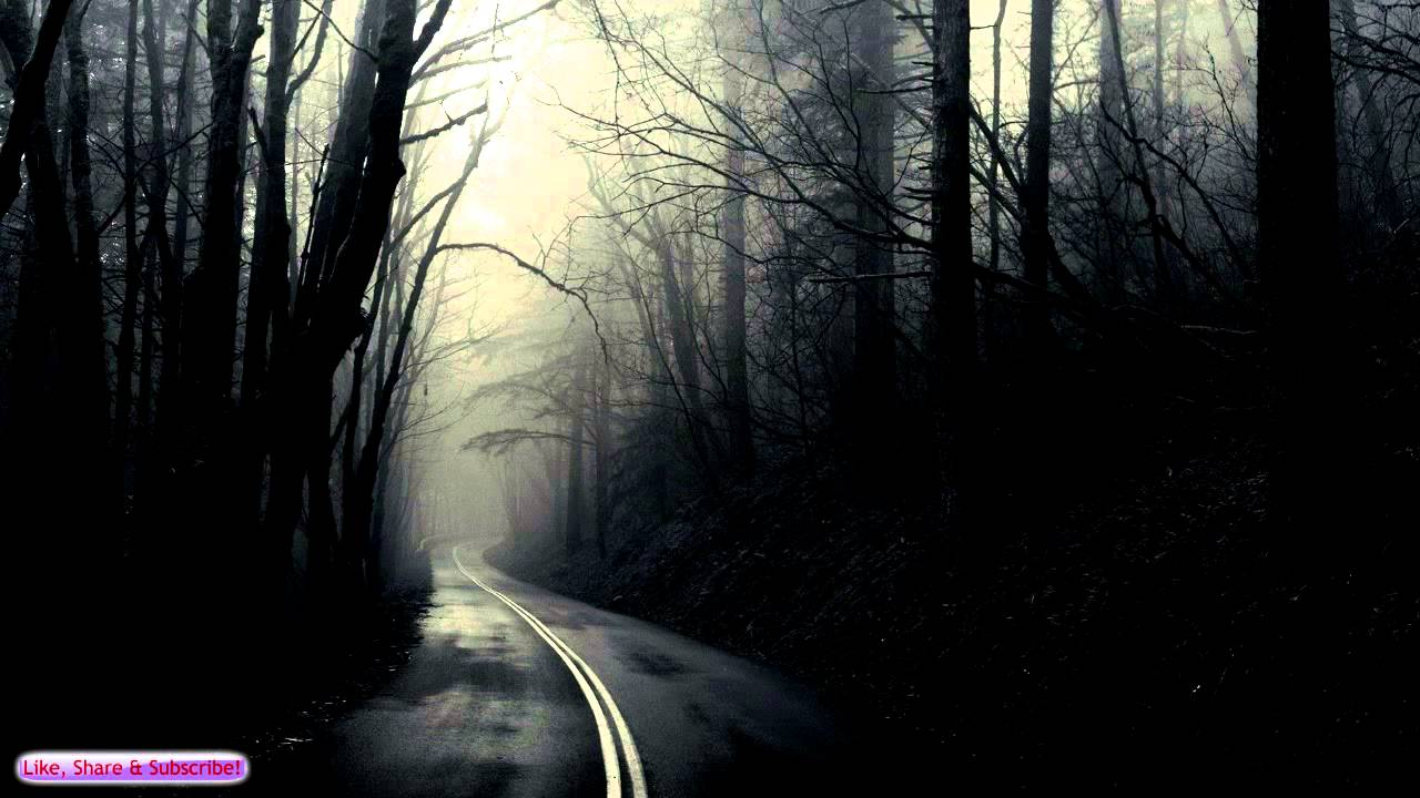 Music Quotes Wallpaper Widescreen Ambient Creepy Music Road Through The Dark Forest Sad